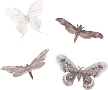 That's Mine Wallsticker Moths 4er-Pack